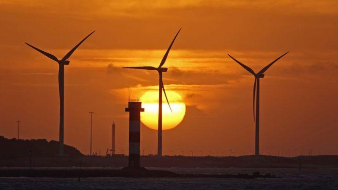 Windpark Rozenburg