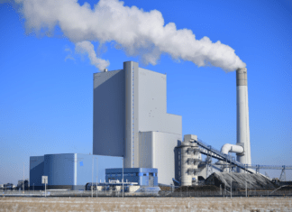 Kolen en biomassa
